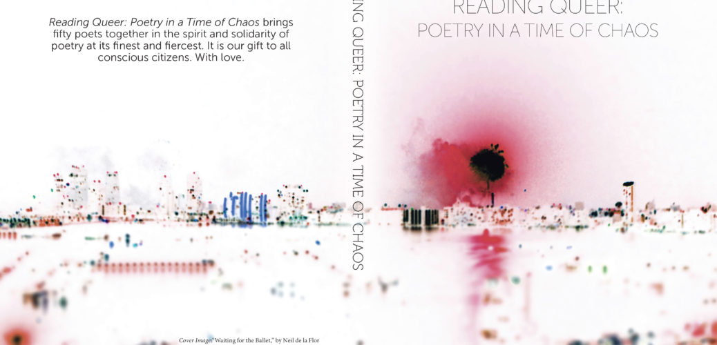 Purchase Reading Queer: Poetry In A Time of Chaos